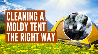How To Clean A Tent With Mold (Step-By-Step)