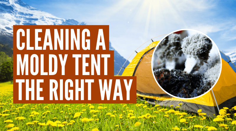 How to clean a tent with mold