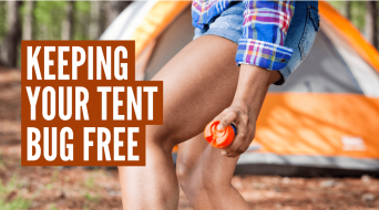 How to Keep Bugs Out of a Tent (3 Simple Steps)