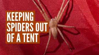 How to Keep Spiders Out of Your Tent (7 Best Tips)